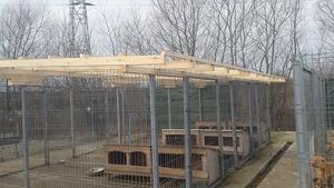 4_Baubeginn Dächer